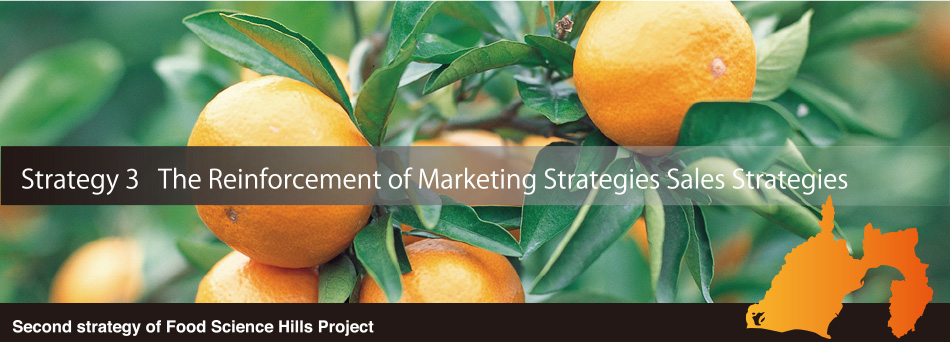 The Reinforcement of Marketing Strategies Sales Strategies