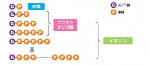 イヌリン-構造式